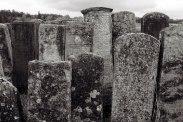 Brody, Jewish cemetery