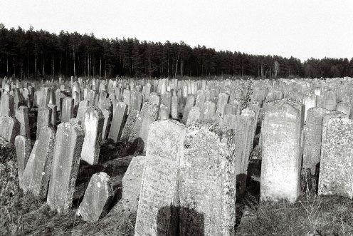 Brody - Jewish cemetery