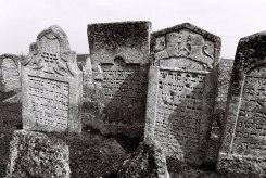 Pidhaitsi - Jewish cemetery