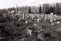 Sadagora - Jewish cemetery