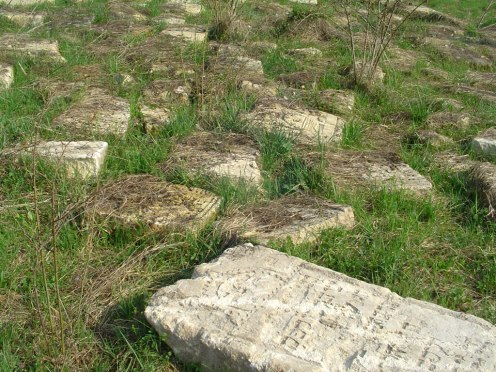 Rohatyn - fragments of Jewish grave stones, April 2013