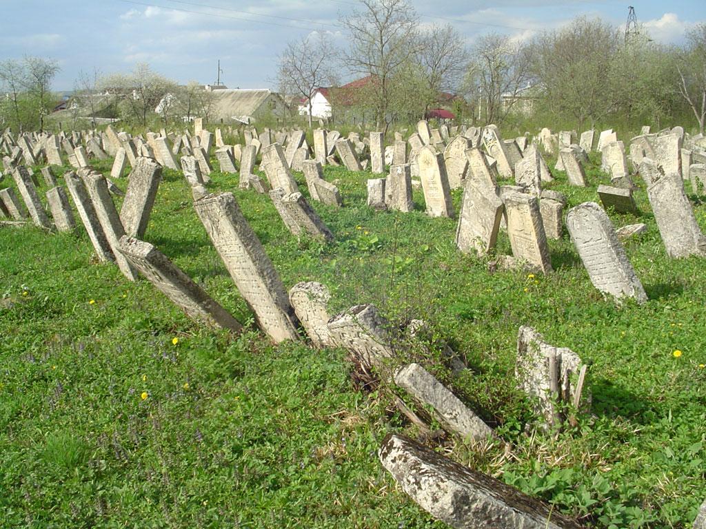 Vyzhnytsia - Jewish cemetery