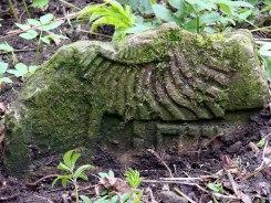 Czernowitz old Jewish cemetery, fragment of a grave stone, © Mykola Kushnir