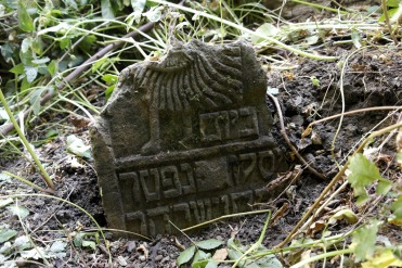 Czernowitz - old Jewish cemetery