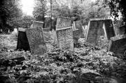 Jewish Cemetery, Vashkivtsi, UA, 2013 ©Sylvia de Swaan