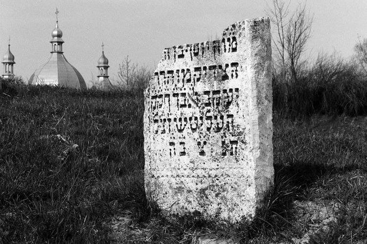 Rohatyn, Jewish cemetery, April 2013