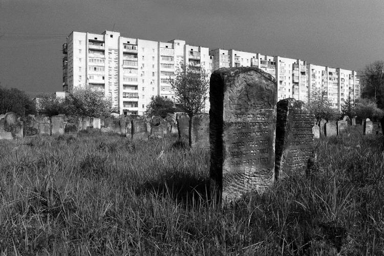 Kalush, Jewish cemetery, May 2013