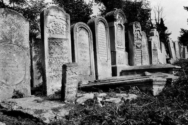 Chernivtsi (Czernowitz), Jewish cemetery, August 2012
