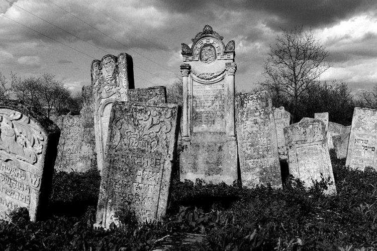 Vyzhnytsia (Wischnitz), Jewish cemetery, May 2013
