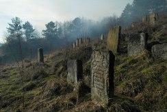 Staryi Sambir - Jewish cemetery