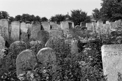 Burshtyn, Jewish cemetery