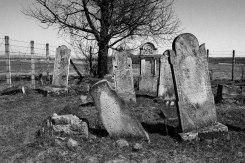 Solca Jewish cemetery