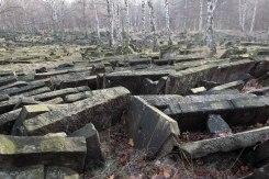 Warsaw - Brodno Jewish cemetery