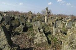 Soroca - Jewish cemetery