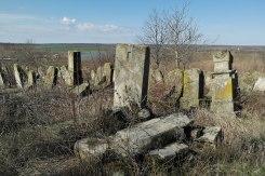 Zguriţa - Jewish cemetery