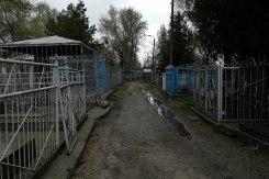 Bălţi - Jewish cemetery