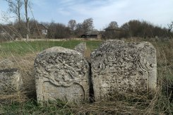 Lipcani - Jewish cemetery