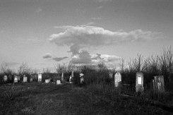 Prodănești (Prodaneshty) Jewish cemetery