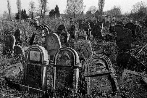 Soroca Jewish cemetery
