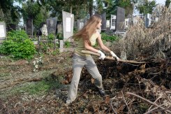 Czernowitz Jewish cemetery - volunteers at work