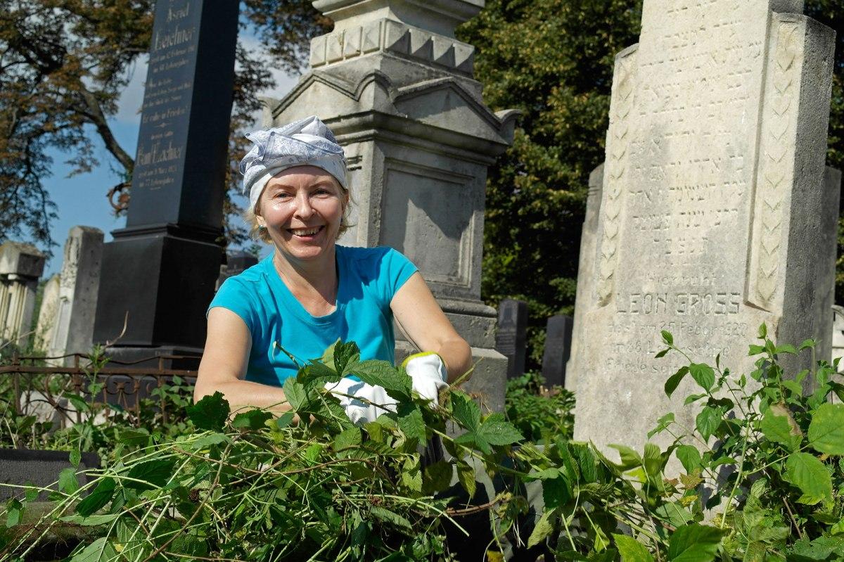 Volunteers working in the Jewish cemetery of Chernivtsi (Czernowitz)