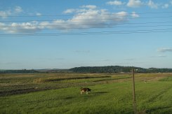 Galicia from a train window