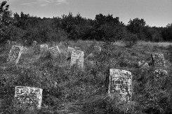 Raşcov Jewish cemetery
