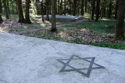 Bronytsya forest mass graves
