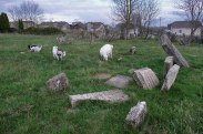 Tovste Jewish cemetery