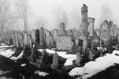 Chernivtsi (Czernowitz) Jewish cemetery, Bukovina, Ukraine, 2014