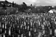 New Jewish cemetery, Siret, Bukovina, Romania, 2015