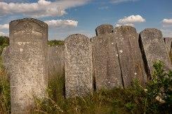 Brody Jewish cemetery