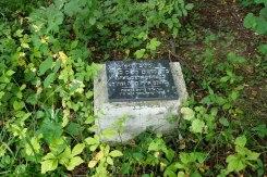 Stryi Jewish cemetery