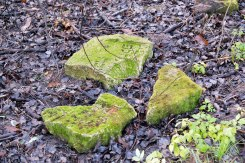 Komarno - fragments of tombstones from a construction ground returned to the Jewish cemetery