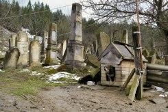 Gura Humorului, Bukovina in Romania - Jewish cemetery