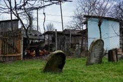 Sasovo - Jewish cemetery