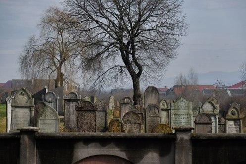 Tiachiv - Jewish cemetery