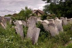 Burshtyn - Jewish cemetery
