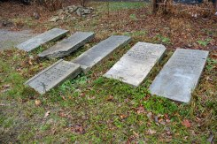 Mlyniv Jewish cemetery