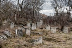 Dubăsari Jewish cemetery