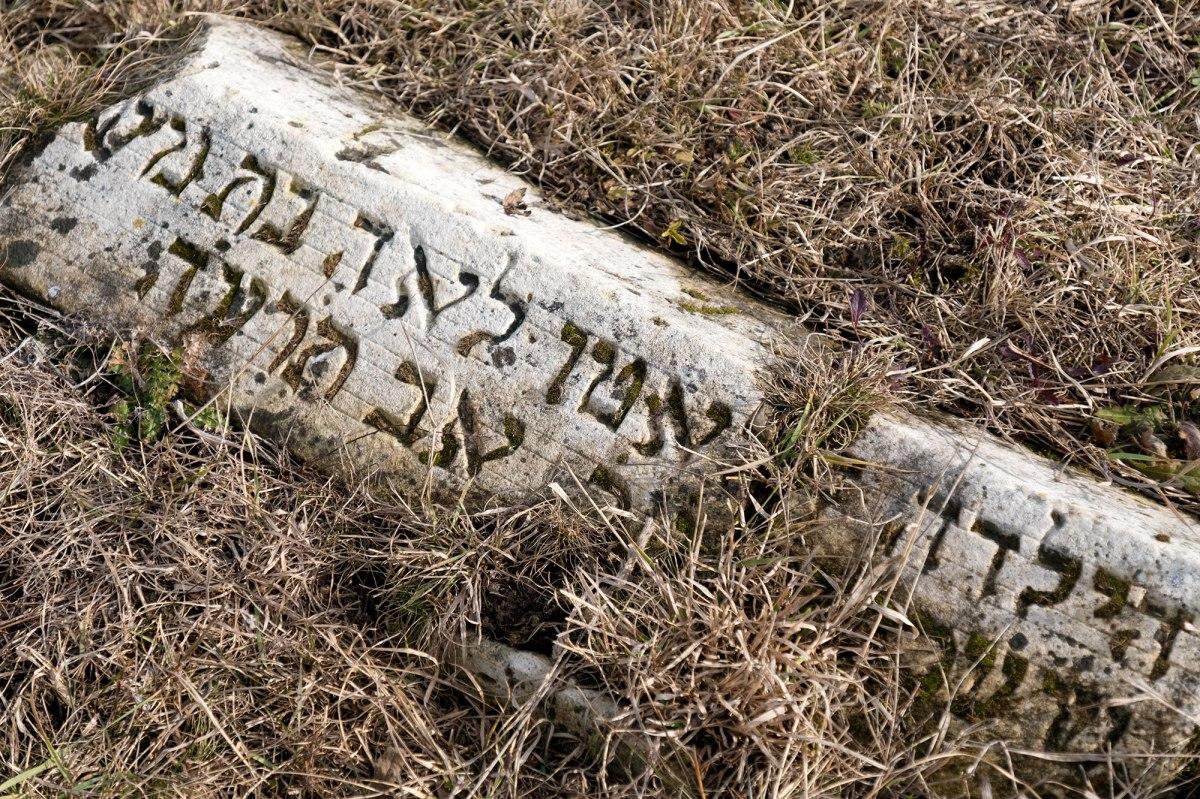 Edineț Jewish cemetery