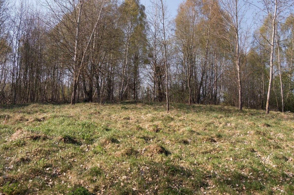Porazova Jewish cemetery