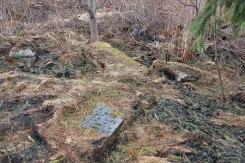 Skole - Jewish cemetery
