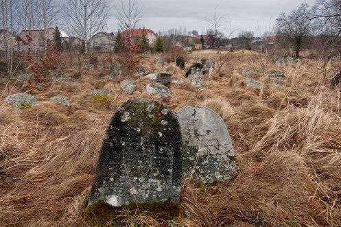 Rozhniativ - Jewish cemetery