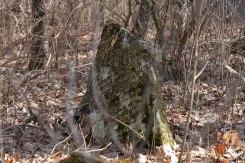 Horodenka - old Jewish cemetery