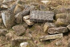 Zolotyi-Potik - Jewish cemetery