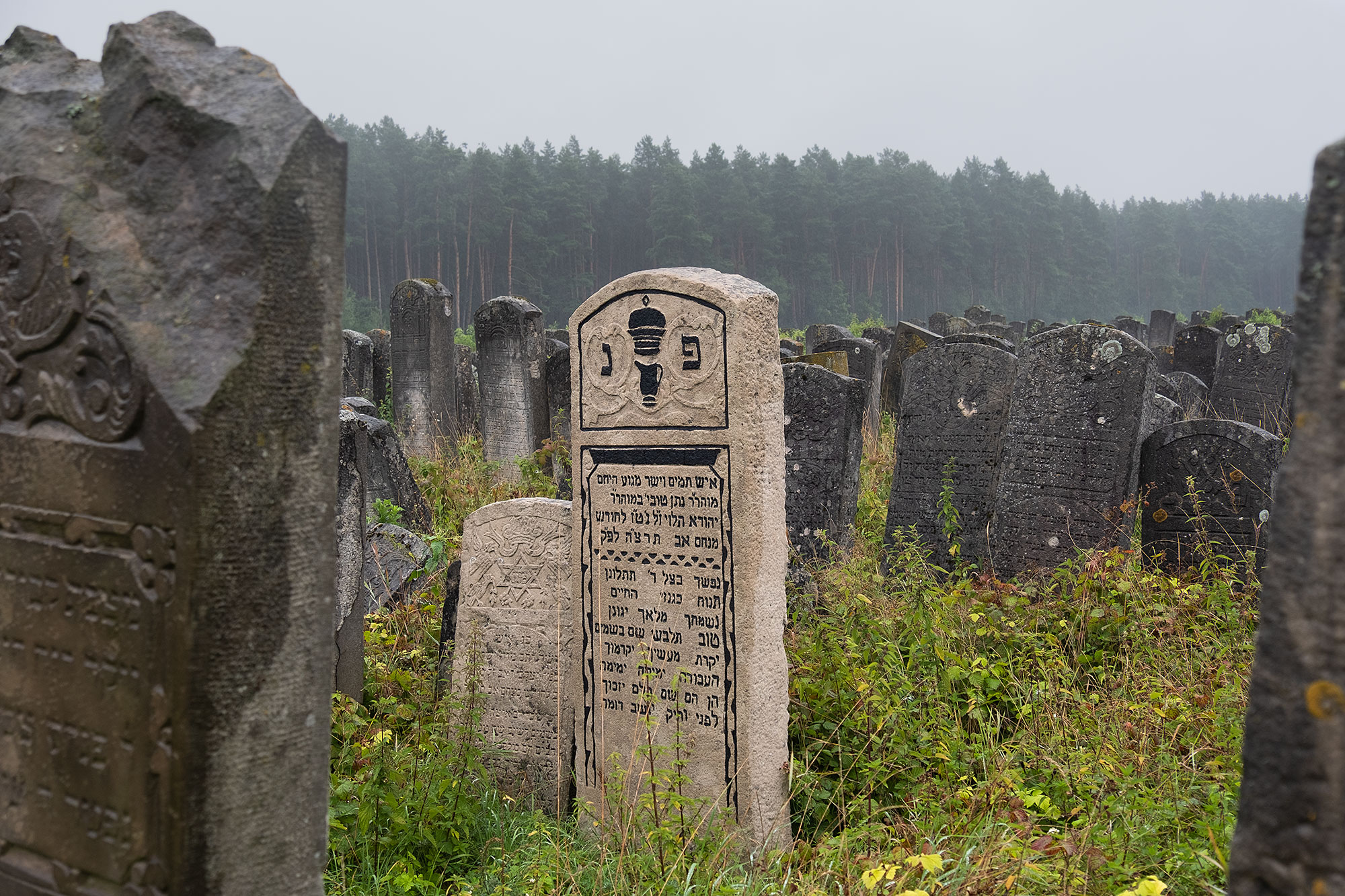 Brody - New Jewish cemetery