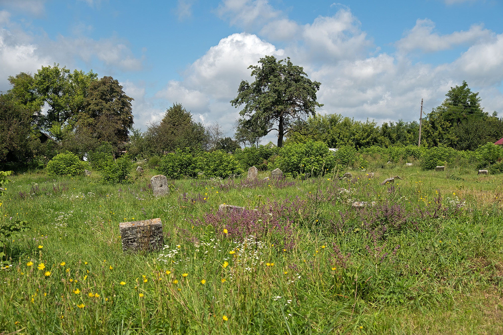 Shatava - Jewish cemetery